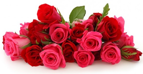 https://giftsalove.files.wordpress.com/2015/01/valentine_roses.jpg